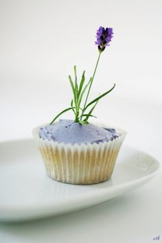 Amazingly simple, lavender-iced cupcake...topped off with its own little sprig