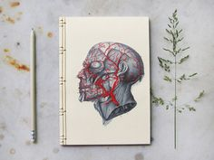 EMBROIDERING JAPANESE STYLE NOTEBOOKS WITH VEINS, 3D MESH MODELLING AND INSECTS  - Greek artist Chara creates stunning Japanese style embroidered notebooks. See her designs and photogallery incl. veins, insects, flowers & 3d mesh holograms!