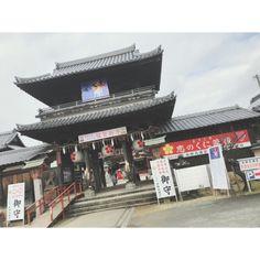 . . 福岡に住んどる... #Team8 #AKB48 #Instagram #InstaUpdate