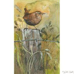 Wren.  Alex Clark Art Ltd.