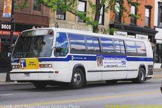 (at Brooklyn, New York) Heavy Duty Trucks, Heavy Truck, Metropolitan Transportation Authority, Bus Terminal, Cab Over, Fishbowl, Rhythm And Blues, Bus Driver, Busses