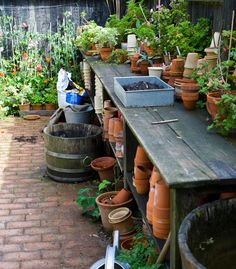 """I am not the only one with a """"busy"""" potting area"""