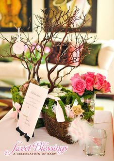 "Gorgeous ""Sweet Blessings"" Baby Shower"