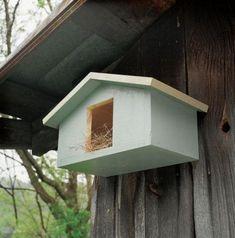 Wood Mourning Dove Bird House Plans #birdhouseplans