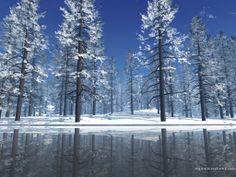 Pictures outdoors snow | Outdoor_Snow_Scene_-_Christmas_Wallpaper.jpg
