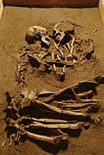 """""""Lovers of Valdaro"""". Valdaro, Italy. Neolithic period (5000-4000 BCE). Double burials are rare, and the pose and the positioning of this couple are unique. After an initial examination of the bones, experts determined that the man and woman were no more than 20 years old, and both around 5 feet, 2 inches tall. (Jan 2008) #archaeology"""
