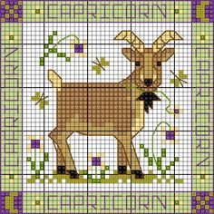 Capricorn update! | Lesley Teare Thoughts on Design