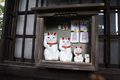 Maneki neko, japanese lucky cats