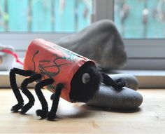 toilet paper roll spiders f