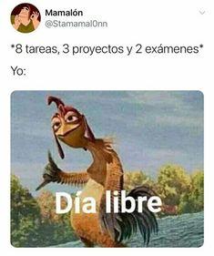 Funny Spanish Memes, Spanish Humor, Best Memes, Dankest Memes, Funny Memes, Reaction Pictures, Funny Pictures, Mexican Memes, Pinterest Memes