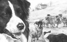 come disegnare il volto con Andrew Loomis: i piani facciali. - Circolo d'Arti - disegno e pittura Chiaroscuro, Dogs, Drawing, Kitchen Interior, Animals, Home, Figurative, Animaux, Doggies