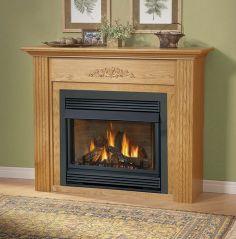 Fireplace Inserts, Ventless Gas Fireplace Insert, Napoleon Fireplace