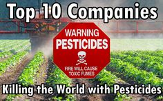 Top 10 Companies Killing the Natural World with Pesticides – Also the Biggest Seed Producers