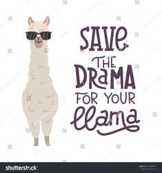 cute alpaca with glasses hand drawn cartoon poster with lettering quote. vector illustration design for cards posters t-shirts invitations birthday room decor. save the drama for your llama Cartoon Posters, Quote Posters, Llama Images, Find Myself Quotes, Llama Drawing, Cartoon Llama, Cute Alpaca, Birthday Wishes Funny, Graphic Design Projects