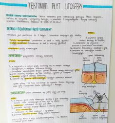 School Notes, Bullet Journal, Ocean, Characters, Beauty, Geography, School Grades, Beleza, School Notebooks