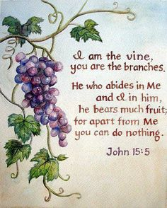 John 15:5 - We get our nourishment from Jesus, His living water, and His light help us to grow and produce good fruit. AMEN!!