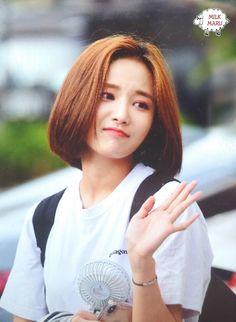 Hair Color, Kpop, Asian, Comedy, Colour, Color, Haircolor, Hair Color Changer, Asian Cat