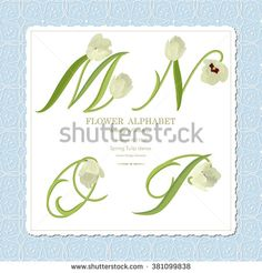 Floral N Stock Photos, Images, & Pictures | Shutterstock