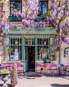 cafe in paris - Au Vieux Paris d'Arcole Wonderful Places, Beautiful Places, Illustration Blume, Shop Fronts, Wisteria, Doorway, Belle Photo, Flower Decorations, Flower Power