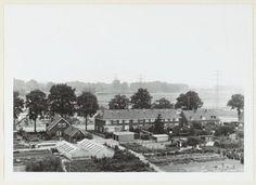 Voorsterallee Zutphen (jaartal: 1970 tot 1980) - Foto's SERC
