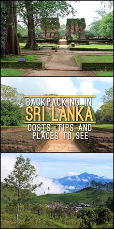 Backpacking in Sri Lanka -- lots of tips including how much it'll cost and heaps of cool things to see and do in Sri Lanka.