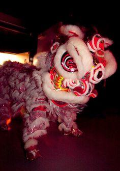 A Chinese New Year Dragon Chinese New Year Dragon, Coventry University, Wreaths, Halloween, Decor, Decoration, Door Wreaths, Deco Mesh Wreaths, Decorating