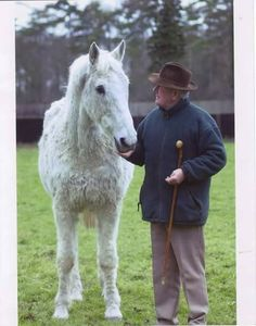 Desert Orchid and David Elsworth.