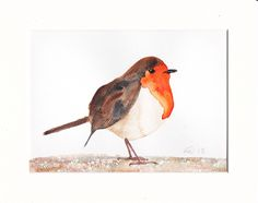 An original watercolour painting of a Robin by AlinaBjelos on Etsy