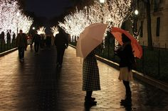 The lights at Columbia University, NYC by Lizzie927, via Flickr