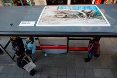 Juergen Teller is on top of the bus shelter