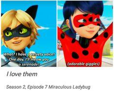 #MiraculousLadybug s2 quotes #LadyNoir #Ladybug #ChatNoir