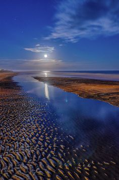 Full Moon at Folly Beach - Charleston SC. So blessed I live in Charleston. Places To Travel, Places To See, Sky Sunset, Folly Beach, Ciel, Beautiful Beaches, Beautiful Landscapes, Beautiful World, Wonders Of The World