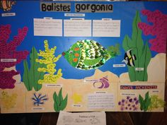 Fashion a Fish 4th grade science coral reef ecosystem poster More 4nd Grade at: www.TutorFrog.com
