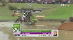 The Connemara-sired Portersize Just a Jiff shows off his quick-thinking with Camilla Speirs at the 2014 World Equestrian Games. keep this horse forever sweet lord