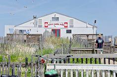 Kitty Hawk Pier 2015