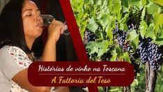 Con Nadir, minha esposa, produziomos este video na vinicola Fattoria del Teso. A Fattoria del Teso fica na região de Montecarlo, em Lucca, Toscana. É una região que produz bastante vinho branco e na Fattoria del Teso são especializados em um tipo de vinho: o Vin Santo. Assista a história. Boa visão!  Aqui a...