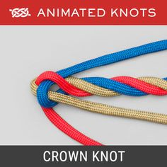 Knots in Alphabetical Order. There are 196 knots listed (animated) and 374 total knots as some knots are known by several names. Select by Activity, Type or Search for Knots. Paracord Knots, Rope Knots, Animated Knots By Grog, Quick Release Knot, Lanyard Knot, Scout Knots, Sailing Knots, Survival Knots, Four Strand Braids