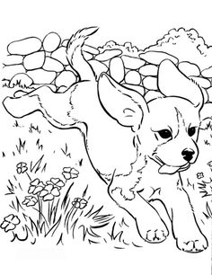 free coloring pages dogs mewarnai