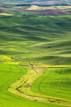 The Palouse landscapes from Eastern Washington