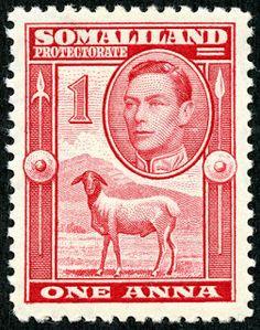 "Somaliland Protectorate (British Somaliland) 1938 Scott 85 1a carmine ""Blackhead Sheep"""