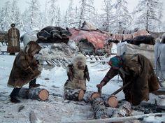 Nenets People :: Peninsula Yamal, Siberia, Russia :: a number 41.300 people.