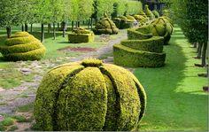 Thyme walk, edged by topiary yews, and pollared hornbeam trees Topiary Garden, Garden Art, Garden Design, Highgrove Garden, Royal Garden, Formal Gardens, Parcs, Trees And Shrubs, Dream Garden