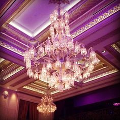 Chandelier at The Plaza. Photograph by Dara Senders