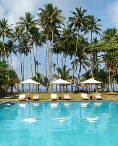 Hotel Mermaid & Club 3.5*, Шри-Ланка: Читайте объективные отзывы и просматривайте фотографии реальных путешественников. Проверяйте местоположение, а также находите ближайшие рестораны и достопримечательности при помощи интерактивной карты TripAdvisor. Сравнивайте цены и выбирайте лучшее спецпредложение для своего проживания.