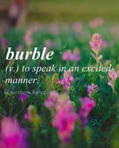 Word for Today: Burble (v), To speak in an excited manner .It's a word. Unusual Words, Weird Words, Rare Words, Unique Words, Cool Words, Beautiful English Words, Unusual English Words, Fancy Words, Big Words
