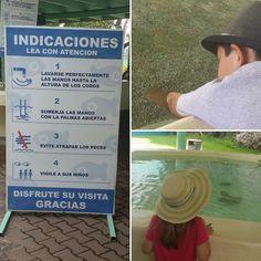 Si quieres tocar las rayas y peces doctor tienes que seguir las indicaciones #SXTNletrero by Sra. Sexton (Mexico June 2016)