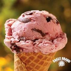 Chocolate Strawberry Ripple Ice Cream from Eagle Brand®