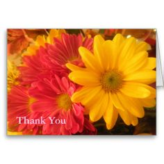 >>>Best          Pink and Yellow Daisies Thank You Greeting Cards           Pink and Yellow Daisies Thank You Greeting Cards We have the best promotion for you and if you are interested in the related item or need more information reviews from the x customer who are own of them before please f...Cleck Hot Deals >>> http://www.zazzle.com/pink_and_yellow_daisies_thank_you_greeting_cards-137279750282119282?rf=238627982471231924&zbar=1&tc=terrest
