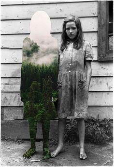 Vintage fotocollages van natuurlijke elementen - EYEspired