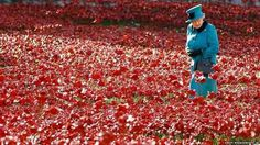 Britain's Queen Elizabeth II walks through a field of ceramic poppies at The Tower of London. The poppies are part of an installation called 'Blood Swept Lands and Seas of Red' which marks the centenary of the outbreak of the First World War. Isabel Ii, Die Queen, Hm The Queen, Pictures Of Queen Elizabeth, Queen Elizabeth Ii, Lady Diana, London In October, October 2014, Elizabeth Ii